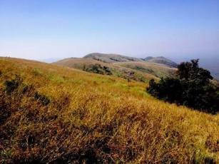 Bandipur Flatlands